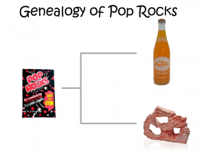Genealogy of Pop Rocks
